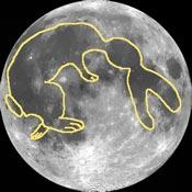 Rabbit in the Moon, Adler Planetarium