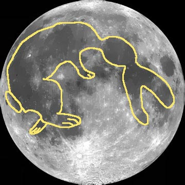 Image result for rabbit in the moon