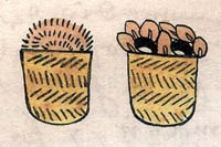 Pic 2: Pinolli (left) and cacao (right); offerings to Centeotl, Codex Tudela fol. 14r (detail)