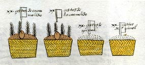 Pic 3: Baskets of two types of pinole paid regularly as tribute to Tenochtitlan by Tlatelolco; Codex Mendoza fol. 19r (detail)