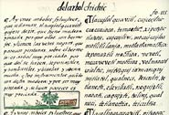 Pic 13: Entry on 'tlacuilolcuahuitl' in the Florentine Codex Book XI
