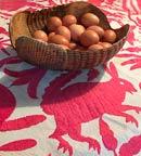 Pic 6: El caparazón de un armadillo sirve como un 'chiquihuite' o canasta; nótese el diseño de armadillo en el mantel