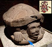 Pic 6: Stone sculpture of Macuilxóchitl encased in a tortoise shell, representing his association with music, National Museum of Anthropology, Mexico City (arrowed - the teardrop pleasure symbol); inset - the 'gold tortoise' emblem
