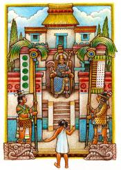 Illustration by Felipe Dávalos