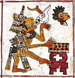 Pic 10: Under the daysign Monkey a semi-divine person, with a tortoise head and the attributes of rain deities, plays a conch shell trumpet and vertical drum; Codex Borgia pl.24 (detail)