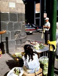 Stone serpent head built into Mexico City street