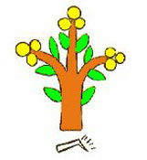 Toponym (place glyph) for XOCOYOHCAN ('It develops fruit'), a reference to the xócotl tree and its yellow fruit