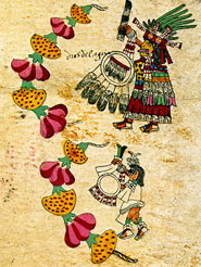 Pic 15: A skull-faced goddess with attendant, and a chain of cempaxóchitl and other flowers, Codex Borbonicus, p.28