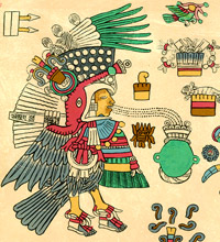 Pic 13: Tezcatlipoca in the guise of a turkey or 'huexólotl', Codex Borbonicus