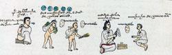 Pic 8: Codex Mendoza, fol.58r (detail)