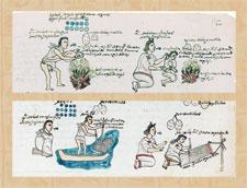 Pic 9: Codex Mendoza, fol.60r (details)