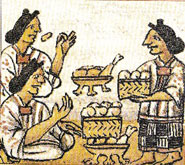 Pic 10: Women preparing food. Florentine Codex, Book  IV, fol.69v