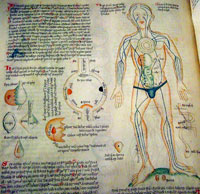 Pic 3: 15th century document showing the position of humours in the body (Wellcome Library)