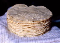 Pic 7: Traditional hand made Mexican corn tortillas