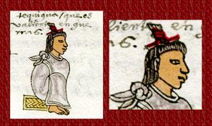 Pic 5: Tequihua warrior, Codex Mendoza, folio 62r