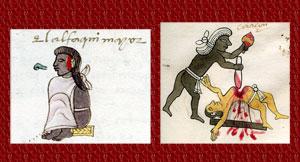 Pic 7: Priest, master of the religious Calmecac school, Codex Mendoza (L) and priest performing sacrifice, Codex Tudela (R)