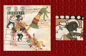 Pic 8: Priests performing multiple sacrifices, Codex Tudela, folio 53