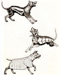16th century armoured dogs: from 'The New Dog Encyclopedia' (reproduced in Dogs of the Conquest)