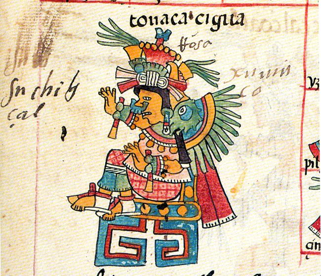 Pic 1  Xochiquetzal as a synthesis  aspect  of Tonacac  237 huatl  Codex    Xochiquetzal Aztec God