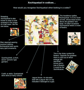 Pic 3: Clues for recognising Xochiquetzal, based on an image of her in the Codex Fejérváray-Mayer (see main picture, above)