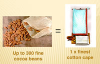 Up to 300 fine cocoa beans = 1 finest cotton cape