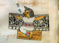 Pic 13: Healer or midwife, Codex Tudela, folio 50