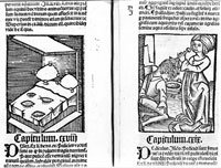 Pic 9: 'Bed bugs and head lice' - from Hortus Sanitatis, Strassburg, 1499
