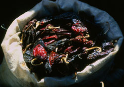 Picture 19: Mexican chillis - Wow!