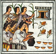Pic 5: Adoration of maize, fourth month festival, with dedications to maize goddess Cinteotl and sustenance deity Chicome Cóatl, Florentine Codex Book 2