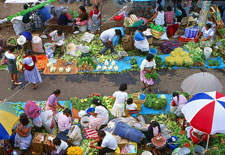 Pic 9: The traditional market at Xochimilco in full swing