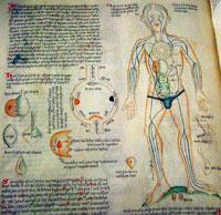 Imágen 2: Documento europeo del siglo XV ilustrando la ubicación de los 'humores' en el cuerpo humano