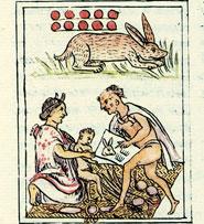 Imágen 7: Cada día tenía sus múltiples asociaciones... (Códice Florentino)