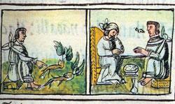 Imágen 10: Médicos aztecas, Códice Florentino Libro 10