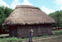 Pic 3: Boy standing before his thatch-roofed house in contemporary Aztec village. The house is built on stones to keep out rainwater, and smoke from the cooking fires inside escapes under the edge of the roof.