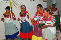 Pic 12: Participants dance before an altar dedicated to crop fertility deities. The woman on the right holds a dressed paper image of Water Dweller while the two in the middle hold images of Grandfather and Grandmother, important earth deities.