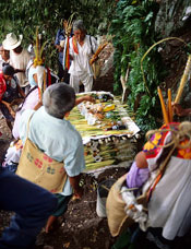 Pic 13: Participants construct an altar dedicated to rain spirits part way up a perilously steep sacred mountain. The leafy arch on the right has been constructed over a table representing the earth's surface.