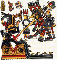 Pic 13: Venus as an owl strikes Tezcatlipoca as god of the North, Codex Borgia