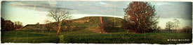 Pic 11: Monks Mound