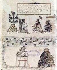 Pic 7: Codex Cozcatzin, folio 1v