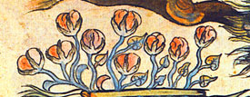 Pic 7: Detail from the Historia Tolteca-Chicimeca, folio 35a