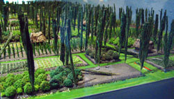 Pic 15: Model 'chinampas' (Aztec 'floating gardens' at Xochimilco), National Museum of Anthropology, Mexico City