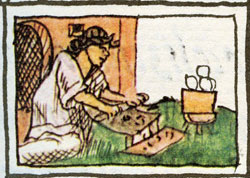 Pic 2: 'The cook', Florentine Codex Book 10