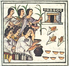 Pic 7: Offering maize, Florentine Codex Book 2