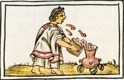 Pic 17: If only we could hear this Aztec woman's song, while she throws maize into a pot... Florentine Codex Book 5