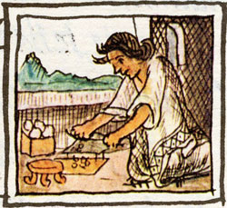 Pic 19: 'The cook', Florentine Codex Book 10