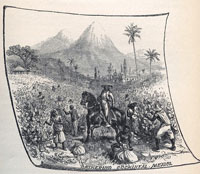 'Gathering cochineal, Mexico' - from Appleton's Guide to Mexico by Alfred Conkling, 1895, p.297