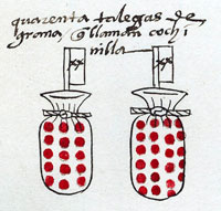 '40 bags of grain that they call cochineal', Codex Mendoza folio 43