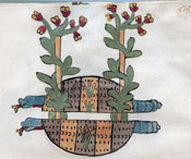 Pic 3: Plants and snakes, Codex Tudela, folio 68