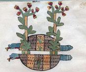 Pic 3: Plants and snakes, Codex Tudela, folio 68