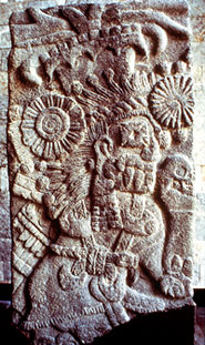 Pic 4: Tlaloc-Cihuacóatl priest: stone sculpture, Museo Nacional de Antropología